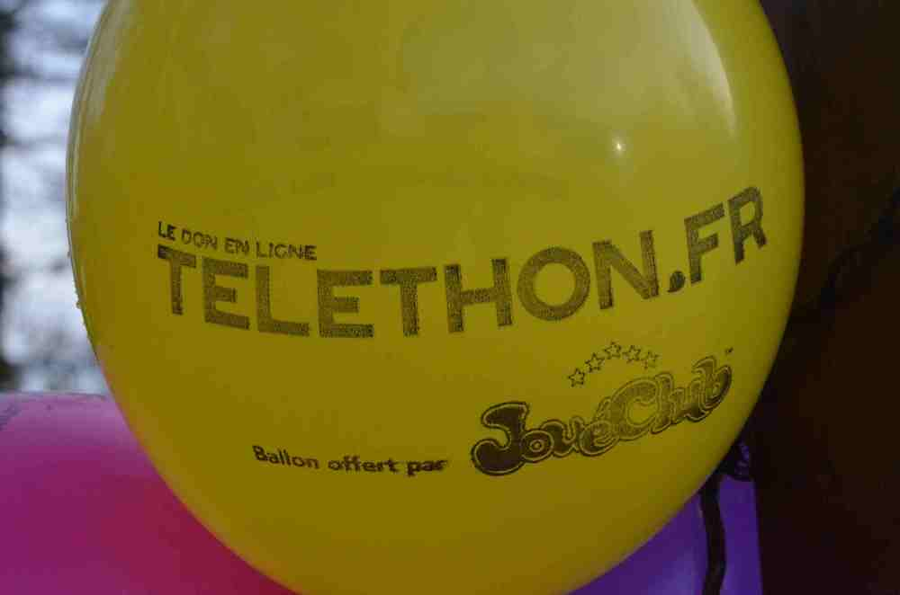 Telethon 2017 (246 photos)